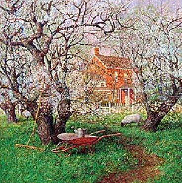 Ned Young Beneath Spring Blossoms