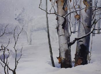 Mario Fernandez Birches