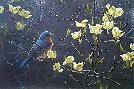 Robert Bateman Bluebird And Blossoms