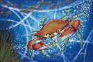 John Donato Blue Crab