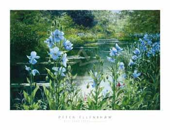 Peter Ellenshaw Blue Poppies