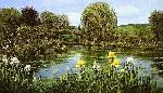 Peter Ellenshaw Bridge at Giverny