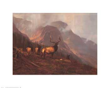Michael Coleman Bookcliffs Elk I