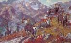 Harry Curieux Adamson Canadian Grandeur Stone Sheep