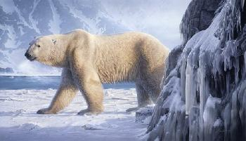 Daniel Smith Catching the Scent - Polar Bear Artist