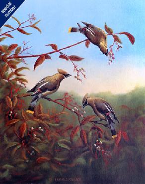 Terrill Knaack Cedar Waxwings Print #1/40 Artist