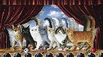 Braldt Bralds A Chorus Line