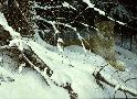 Robert Bateman Cougar in the Snow