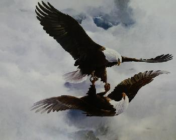 Mario Fernandez Courtship Flight