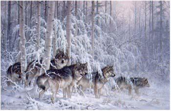 Larry Fanning Crystal Forest - Gray Wolves