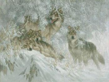 Larry Fanning Crystal Morning - Gray Wolves Giclee on Canvas