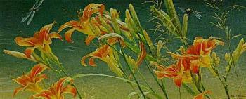 Robert Bateman Daylilies and Dragonflies