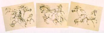 Bev Doolittle Drawn from the Heart Artist