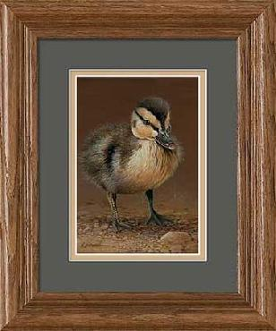 George LaVanish Duckling Framed Open Edition