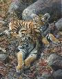 Brenders Endangered Ambassadors - Tiger Cubs Giclee on Canvas