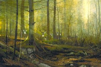 Michael Coleman Eyes of the Forrest - Whitetail Deer Giclee on Canvas
