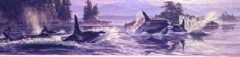 Lee Kromschroeder Flank Speed - Orcas