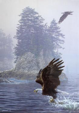 Lee Kromschroeder Fly Fishing - Bald Eagles