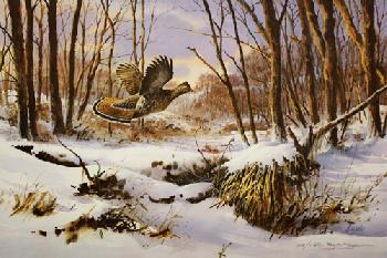James Killen Fresh Snow - Ruffed Grouse