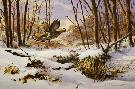 James Killen Fresh Snow - Ruffed Grouse