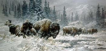 Larry Fanning Front Range Storm Colorado Buffalo Canvas