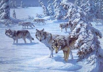 Lee Kromschroeder Full Moon Crossing - Wolves