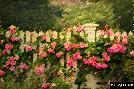 Greg Olsen The Garden Fence
