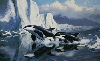 Persis Clayton Weirs Glaciers Edge - Orcas