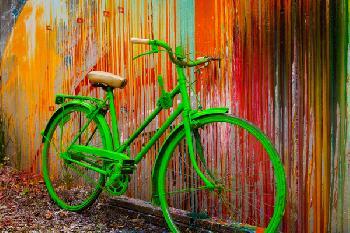 Todd Van Fleet Go Green Signed Open Edition Giclee on Canvas