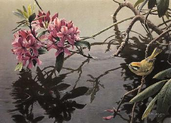 Robert Bateman Golden-Crowned Kinglet and Rhododendron Giclee on Clayboard