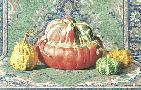 Carlina Valenti Gourds