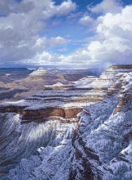 Larry Dyke Grand Canyon Giclee on Canvas