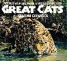 Simon Combes Great Cats