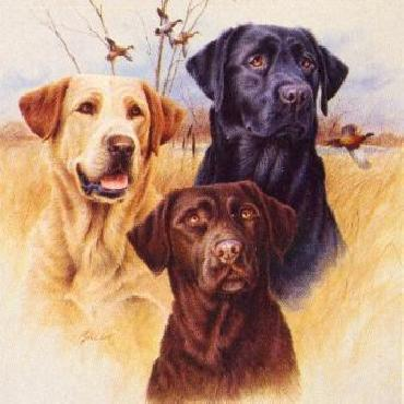 James Killen Great Hunting Dogs I - Labradors