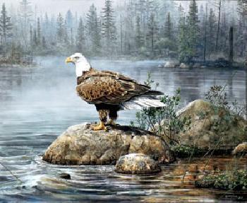Scott Zoellick Headwaters Eagle Artist