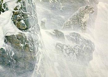 Robert Bateman High Kingdom Snow Leopard Artist