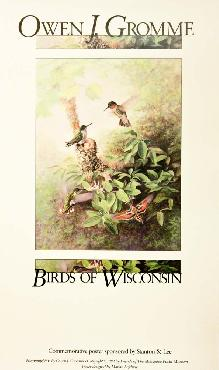 Owen Gromme Hummingbird - Birds of Wisconsin Open Edition on Paper