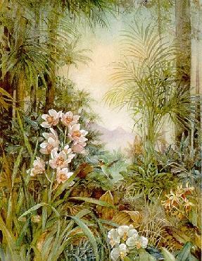 Lena Liu Hummingbird Paradise Canvas
