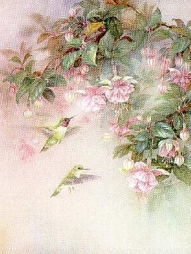 Lena Liu Hummingbirds with Fuchsia