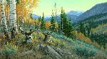 Michael Sieve Indian Summer - Mule Deer