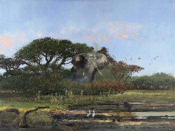 Michael Coleman In the Chobe Giclee on Paper