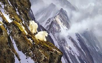 Michael Coleman In the Cliffs - Rocky Mountain Goats Artist