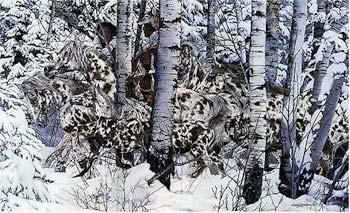 Judy Larson In the Company of Wolves