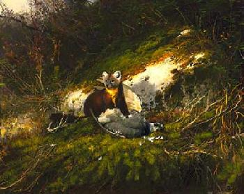 Michael Coleman In the North Woods - Pine Martin Artist