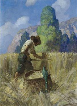 Newell Convers Wyeth I reaped it my way, for I cut nothing off but the ears Open Edition Giclee on Canvas