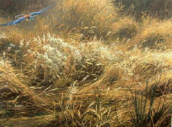 Robert Bateman Kestrel and Grasshopper