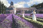 Heide Presse Lavender