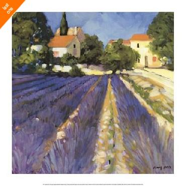 Philip Craig Lavender Fields   LAST ONES IN INVENTORY!!