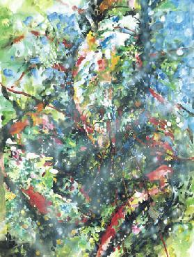 Terry Newitt Lobster Underwater Giclee on Museum Paper