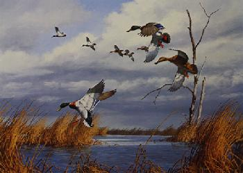 David Maass Mallards in Autumn